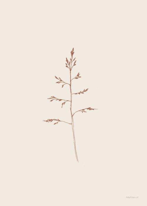 troostkaart gras inkylines