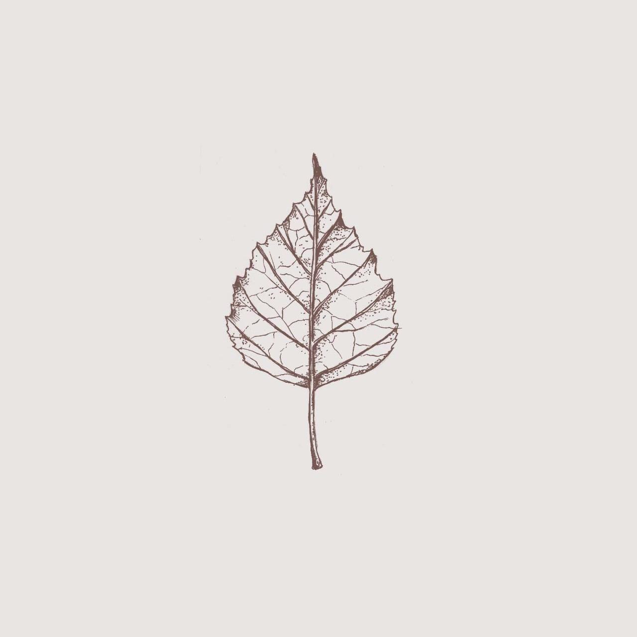 troostkaart berkenblad