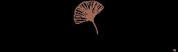 Lichtpuntjes_Logo